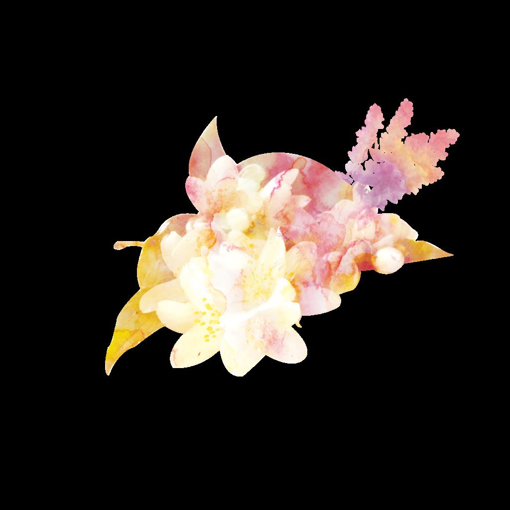 Visuel Hibiscus Lavande Aquarelle , élément graphique, charte graphique, identité visuelle , be mood