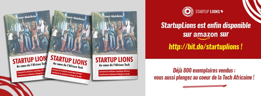 Bannière livres édition start up lions graphisme Alizée Laurence
