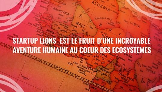 Bannière Startup Lions - Graphiste Infographie Alizée Laurence