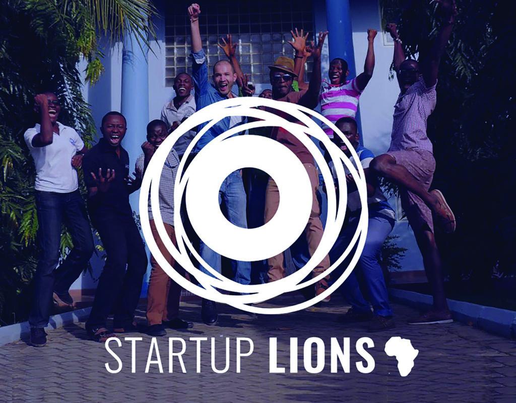 Start Up Lions, la team, l'équipe, graphisme Alizée Laurence, bleu
