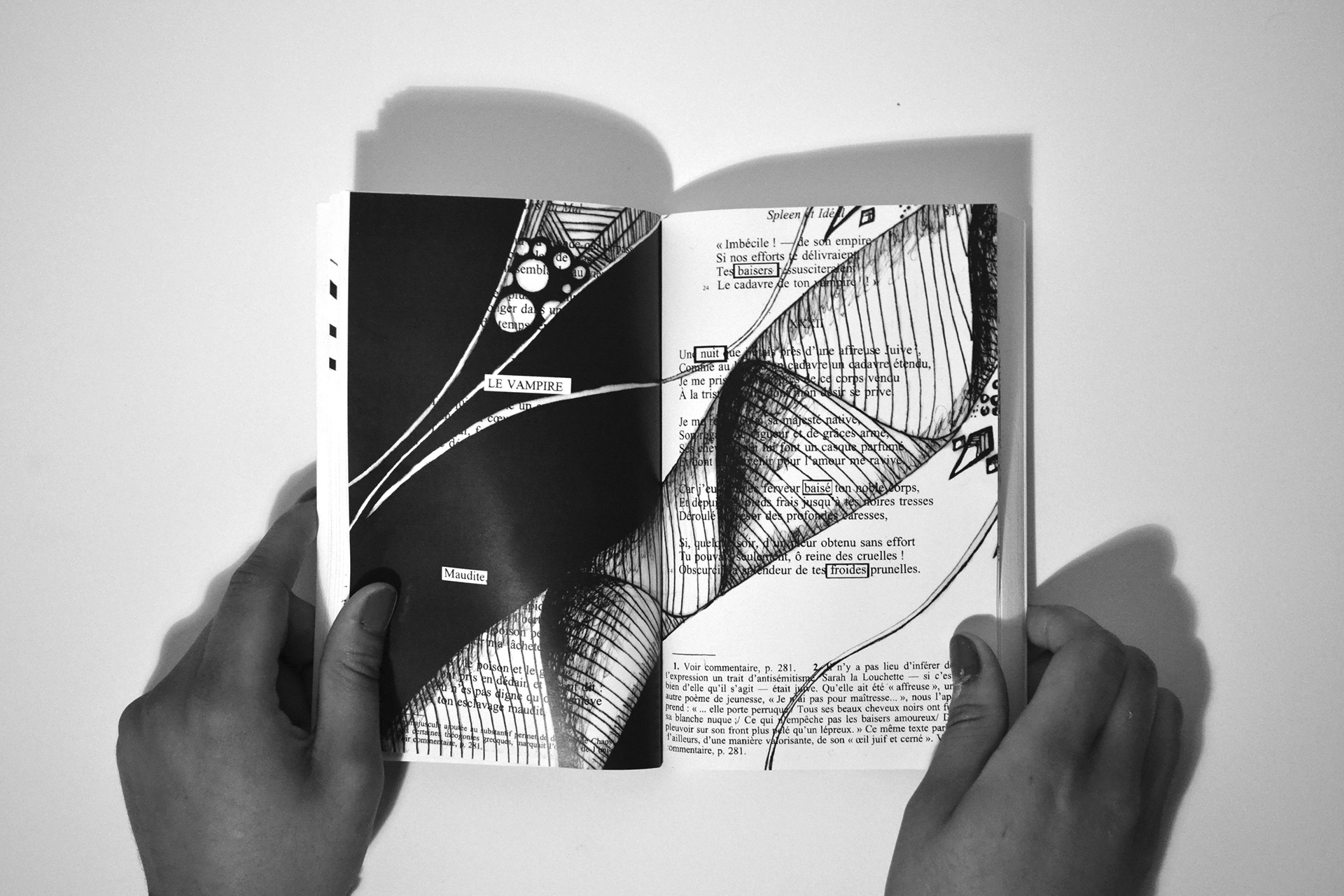 Illustration et dessins sur livre ouvert, l'appel à Projet d'Alizée Laurence illustratrice
