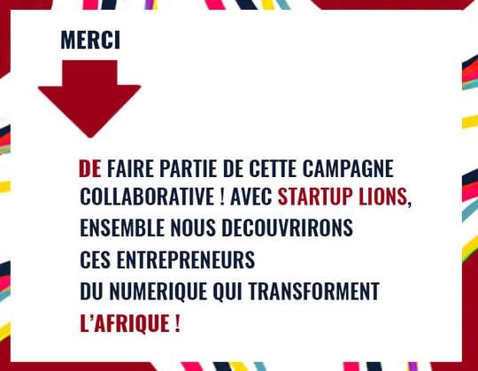 Infographie Start Up lions Alizée Laurence - Graphisme